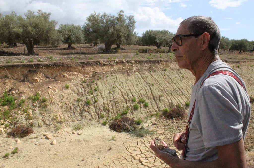 Argital Green Clay Harvesting in Sicily Italy